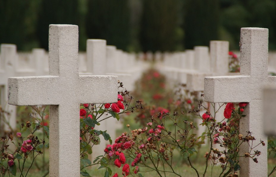 https://pixabay.com/photos/verdun-war-graves-war-commemorate-2372476/